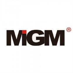 6N4-2A-4 MGM